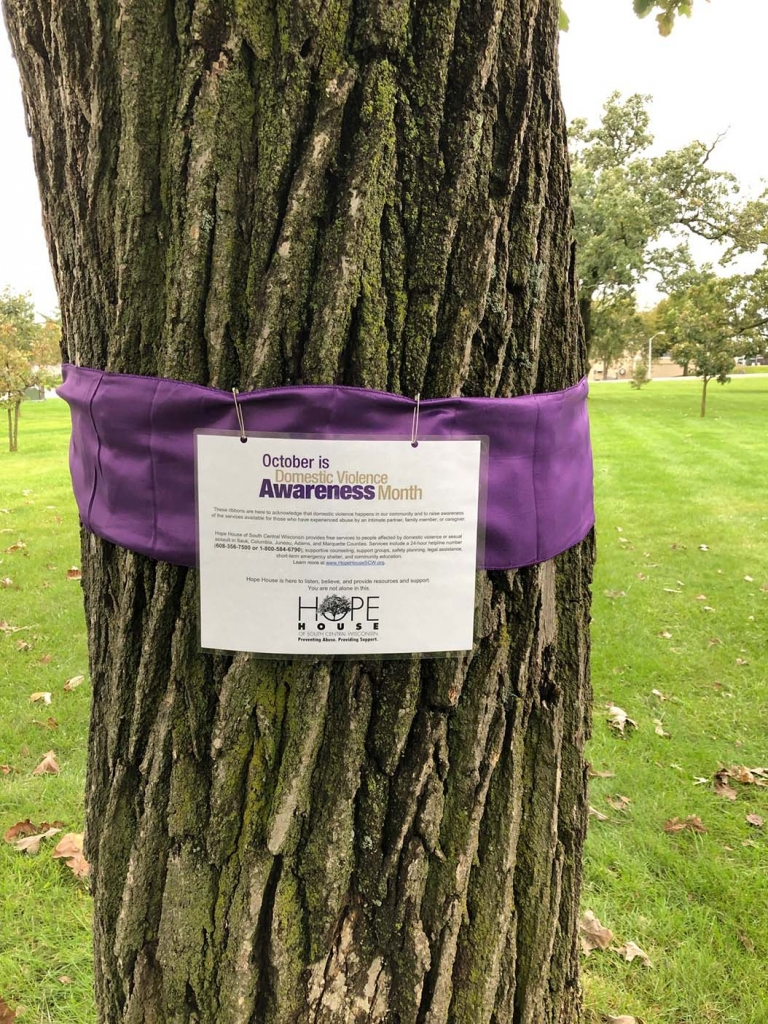 For Domestic Violence Awareness Month this October, Hope House of South Central Wisconsin has purple ribbons around trees at Meyer Oak Grove Park in...